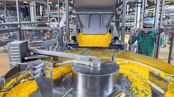Milliárdok élelmiszeripari fejlesztésekre