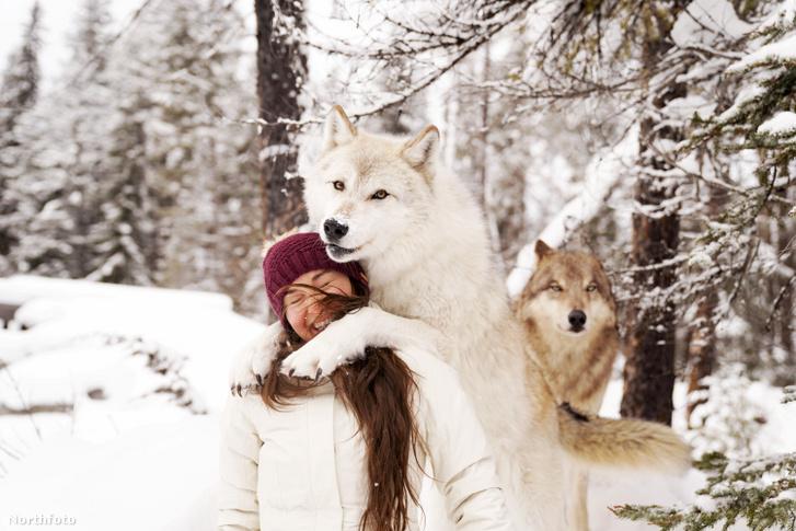 tk3s swns wolf kiss 004