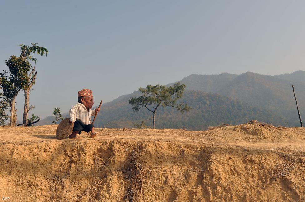 Útra kelt a világ legkisebb embere. Chandra Bahadur Dangi gyalog ment falujából az 540 kilométerre fekvő Katmanduba, hogy a Guinness Rekord Szövetség szakemberei hivatalosan is elismerjék méreteit. A 72 éves férfi 56 centiméter magas. (Március 21.)