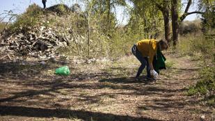 Január végéig lehet pályázni hulladékfelszámolási támogatásra
