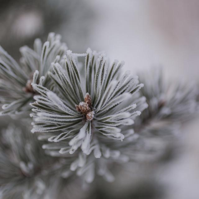Marad a télies idő a héten - Mutatjuk, hol lehet hóra is számítani