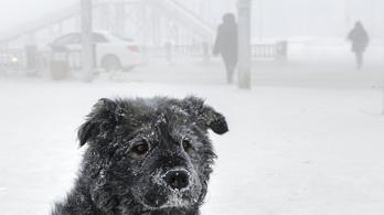 Ez csúnya lesz, ma is szomorúan kapargathatjuk a jeget a szélvédőről