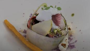 Vegán étterem kapott Michelin-csillagot Franciaországban