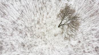 20 centiméteres hó van Úrkúton, országszerte sokfelé havas a táj