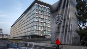 Több vakcina jóváhagyását tervezi a WHO