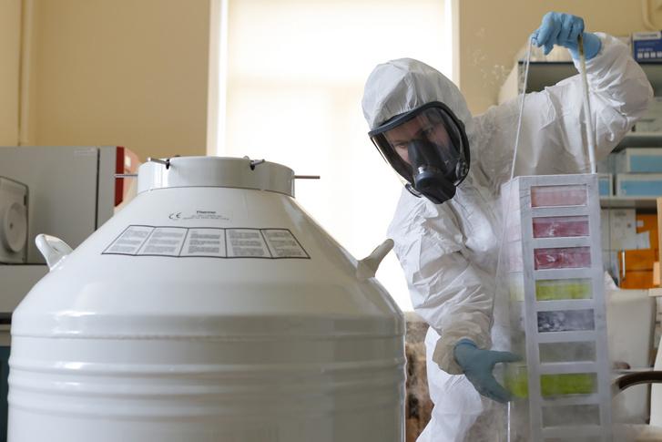 A Covid–19 elleni oltóanyag a Gam-Covid-Vak előállításán dolgoznak az orosz Nyikolaj Gamaleja Nemzeti Járványügyi és Mikrobiológiai Kutatóintézet moszkvai laboratóriumában 2020. augusztus 6-án