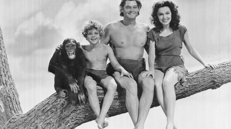 Ne ölelgessük a majmokat!