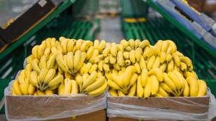 Megjött a közértbe a banánszállítmány, tele volt kokainnal