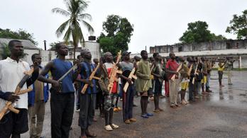 Elfogták a közép-afrikai Seleka milícia egyik vezetőjét