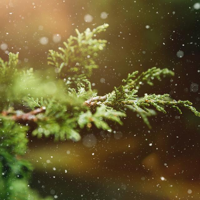 Bekeményít a tél: visszatérnek a mínuszok, és havazásra is számítani kell