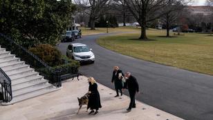 Bidenék kutyái is megérkeztek a Fehér Házba