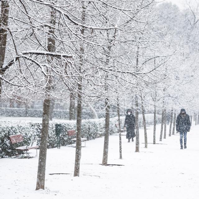 Most látszik igazán, milyen hatalmas károkat okozott a történelmi havazás Madridban