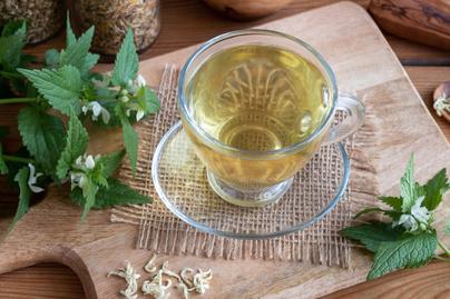 fehér csalán tea