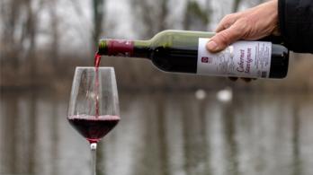Fogyókúrához kortyoljon egy kis vörösbort!
