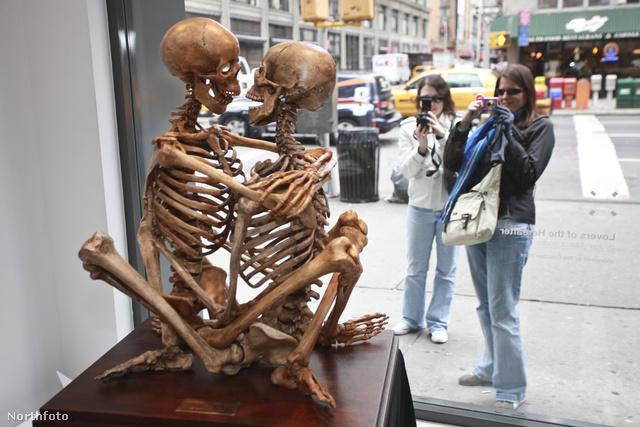tk3s bm skeleton 00940200