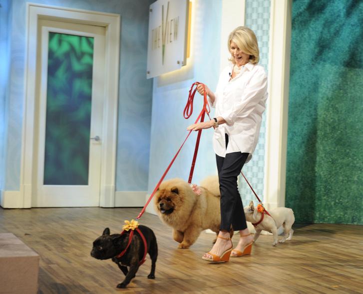Martha Stewart és kutyái.