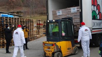 Élelmiszercsomagot küld a Mészáros Csoport a horvát földrengés áldozatainak