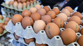 Drágulni fog a tojás