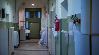 Magyar készítmény segítheti a koronavírus-fertőzés megelőzését