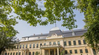 Ablaktárlat nyílik az Almásy-kastély télikertjében