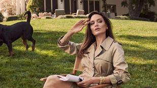 Angelina Jolie a gyerekeik miatt ötpercnyire költözött Brad Pitt otthonától