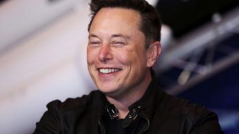 Elon Musk szerint a majmok agyukba beültetett chip segítségével videójátékoznak