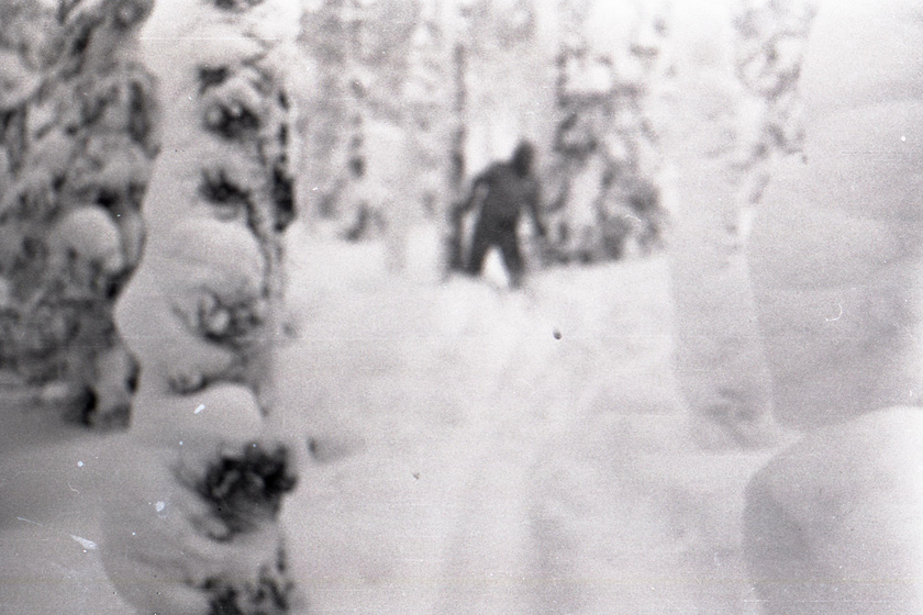 A jetielméletet erősítette ez a fotó, amit az egyik túrázó fényképezőgépén találtak. Sokak szerint viszont csak az egyik hallgató van rajta téli ruhával rétegesen felöltözve.