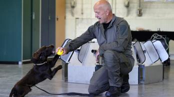 Németországban is kutyák szagolhatják ki koronavírus-fertőzötteket
