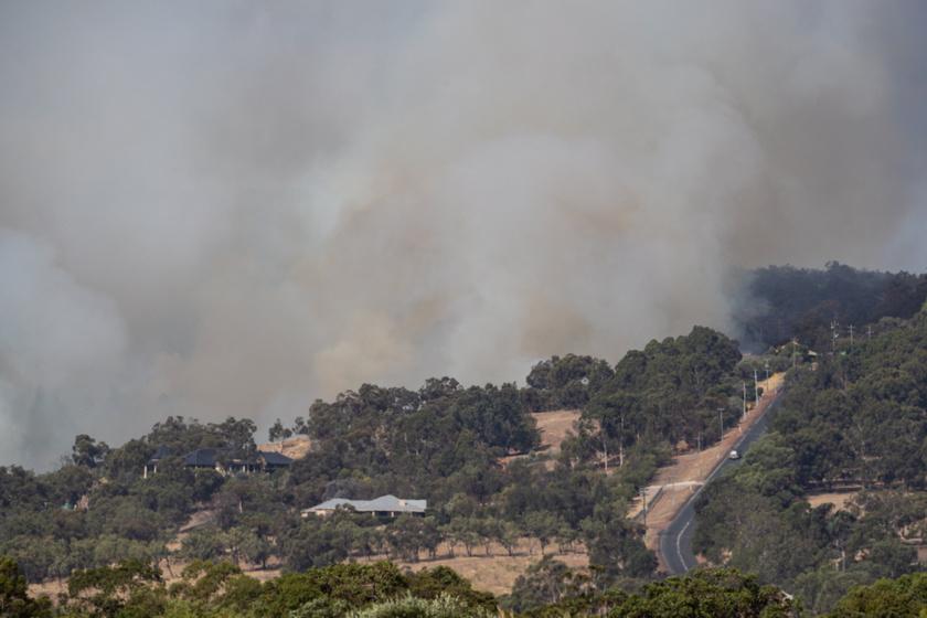 A tűz 9000 hektárnyi területen már 71 otthont pusztított el, és emberek ezreinek kellett elhagynia otthonát.