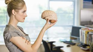 Napi 15 perc elég ahhoz, hogy jobban fogjon az agyad: így edzheted
