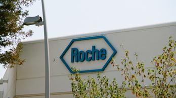 Remek évet zárt a Roche
