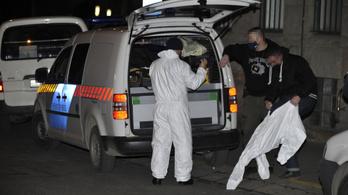 Letartóztatásban a Kapás utcai baltás gyilkos