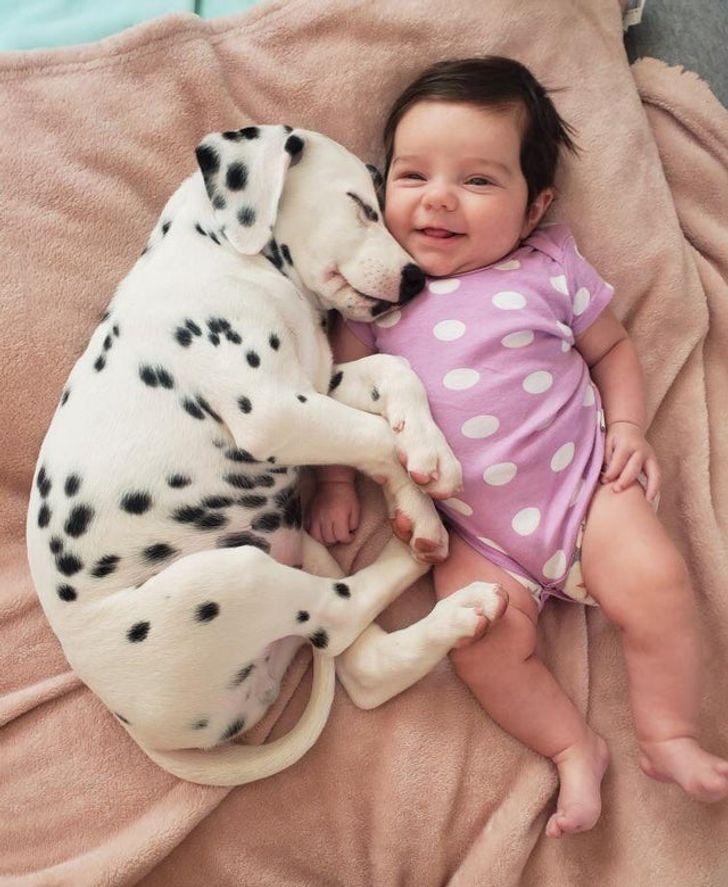 A baba és a kutya már az első pillanattól a legjobb barátok lettek, még egymáshoz illő ruhájuk is van.