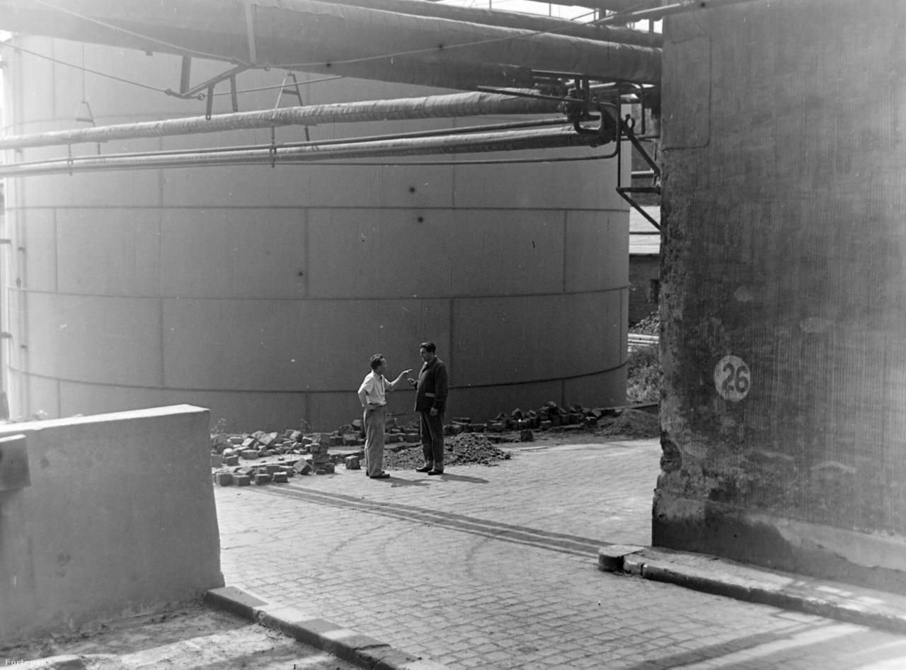 Pedig a Fortepanra is felkerült képei hiánypótlók: sokszor művészi igényességgel fényképezett üzemi fotók egy mára hozzá hasonlóan nagyjából elfeledett miliőről. Képein az ötvenes-hatvanas évek nagyipari munkássága, portréfotók az irodai dolgozókról, micisapkás, köpenyes melósok a gyárudvarról; vállalati kirándulások, üzemi operettelőadások, vagy éppen a női focicsapat és a munkaversenyek sztahanovista hősei és heroinjai. A szappangyári képek alászállást jelentenek a sémákon túli ötvenes évekbe, és az ideológiai díszletek mögött a ma feledésre ítélt munkásság sokféle arcát is megmutatják.