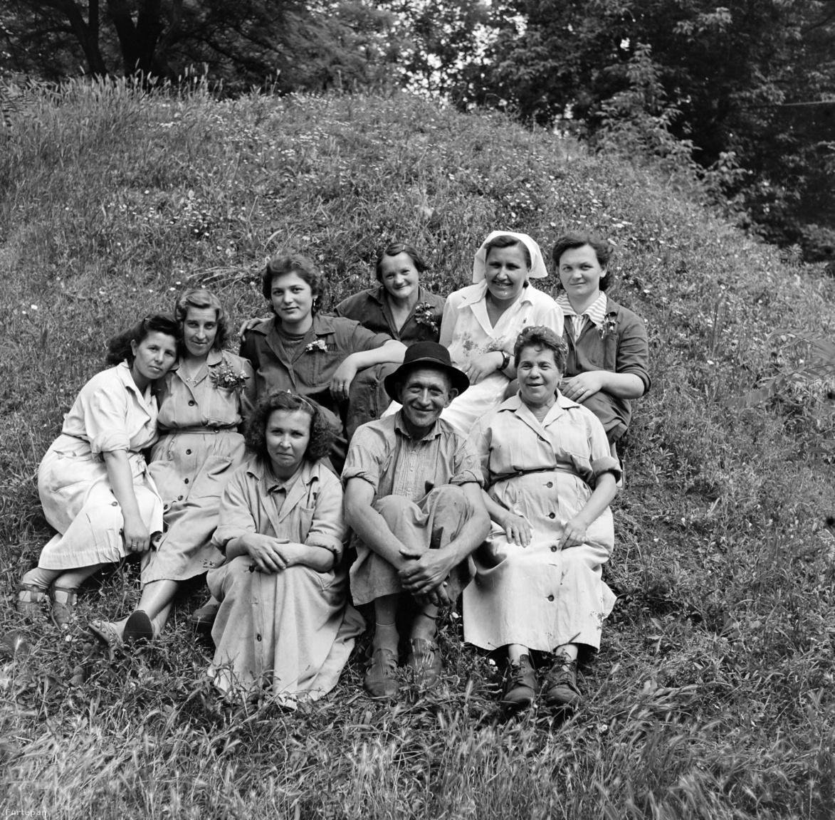 """Hogy a többnyire apolitikus képek sem választhatók el teljesen a közegtől, azt a szappangyár fotókörének korabeli botránya is mutatja. A kőbányai sörgyárból az 1948-as államosítás idején kiszakított, Növényolaj- és Szappangyár Nemzeti Vállalatba betagolt üzemben (itt készült az AMO szappan is) 1955-ben indult el a fotószakkör. A következő év tavaszán azonban máris pártfegyelmit hoztak az egyik kezdeményező, egy Révész nevű fiatal üzemmérnök ellen, aki aktokat készített egy munkásnőről. Koltai Gábor történész-levéltáros tanulmánya szerint a képeket eljuttatták a párttitkárhoz, a gyárban pedig titkos viszonyról terjedt a pletyka.                         """"Én nem olyan lány vagyok titkár elvtárs, aki csak úgy… az első szóra! Engem több héten át agitált a Révész elvtárs, hogy az igazi fotóművészet az akt fotózás és nekem olyan szép alakom van, hogy azt nem szabad elrejtenem, – vagy talán az imperialistáknak tartogatod elvtársnő? – kérdezte aztán tőlem. Én? Az imperialistáknak?"""" – magyarázta a megvádolt lány a jegyzőkönyvek szerint, hogy végül beadta a derekát. Az ügy """"pártszerűtlen viselkedés"""" és a """"kommunista erkölcs megsértése"""" miatt a szakkörszervező mérnök pártbüntetésével végződött, az aktok pedig az állampárt prüdériájának lenyomataként a fegyelmi eljárás mellékleteként maradtak meg az utókornak."""
