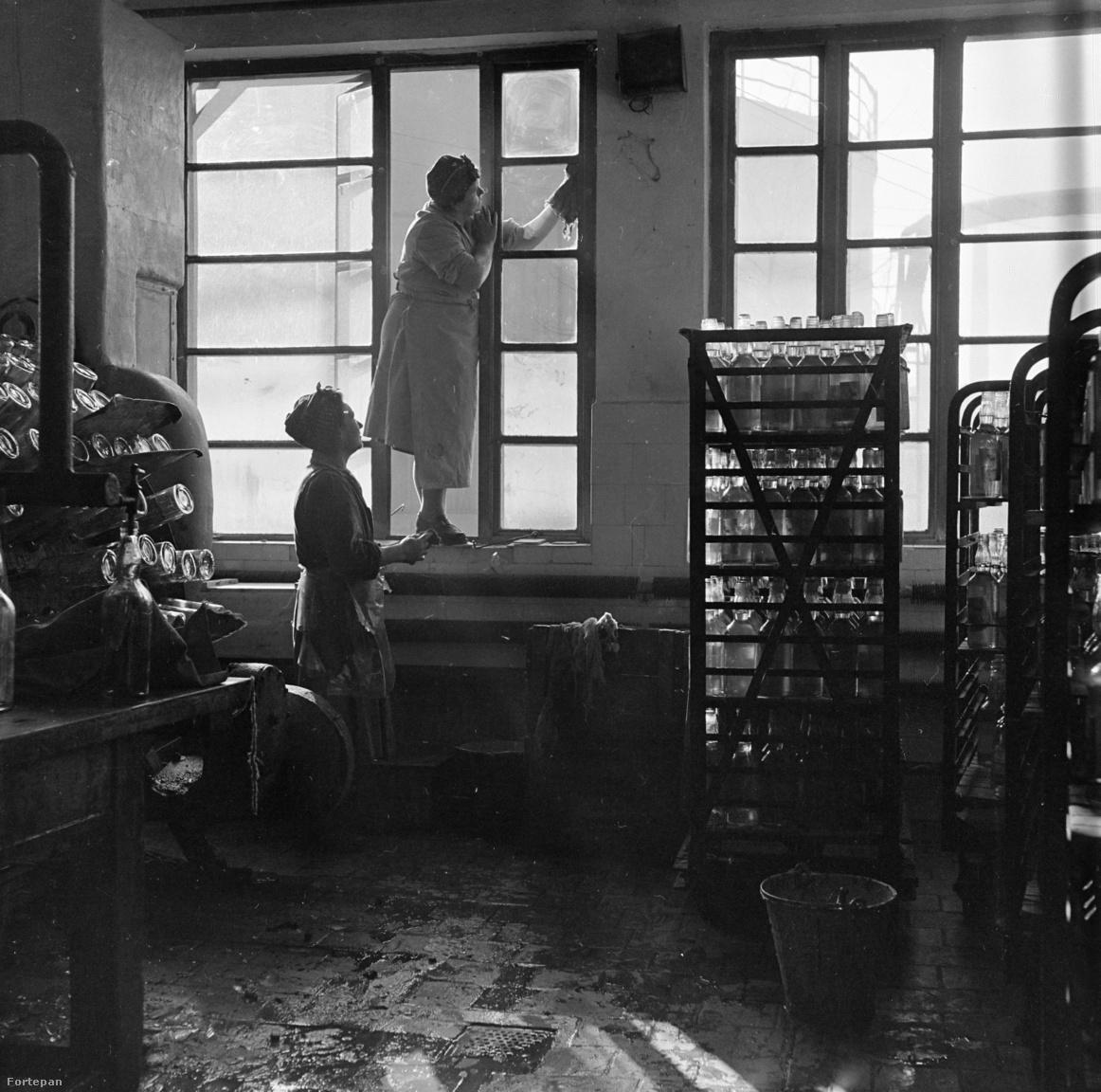 """Nem is olyan könnyű elképzelni a mobilos, instafilteres, képi gondolkodást és különösebb erőfeszítést nem igénylő tömegfotózás korszakában, hogy mit jelentett a szó eredeti értelmében vett, valóban lelkes amatőr fényképezés néhány évtizede, szűkösebb körülmények között. A korai kezdetek és a két világháború közötti fejlődés után az ötvenes évekre a fotóamatőr mozgalom országossá vált, kis művelődési házakban és üzemekben gombamódra nőttek a fotóklubok. Bár vegyes volt a színvonal, és a Népművelési Intézeten keresztül ezt is igyekeztek """"államosítani"""", a fotókörök hiánypótlók voltak: százezreknek adták meg a fejlődés és a megmutatkozás lehetőségét, és nem utolsó sorban azt a közeget, amiben az amatőr fotós más hobbistákkal és helyi kismesterekkel együtt kiléphet a kép magányából."""