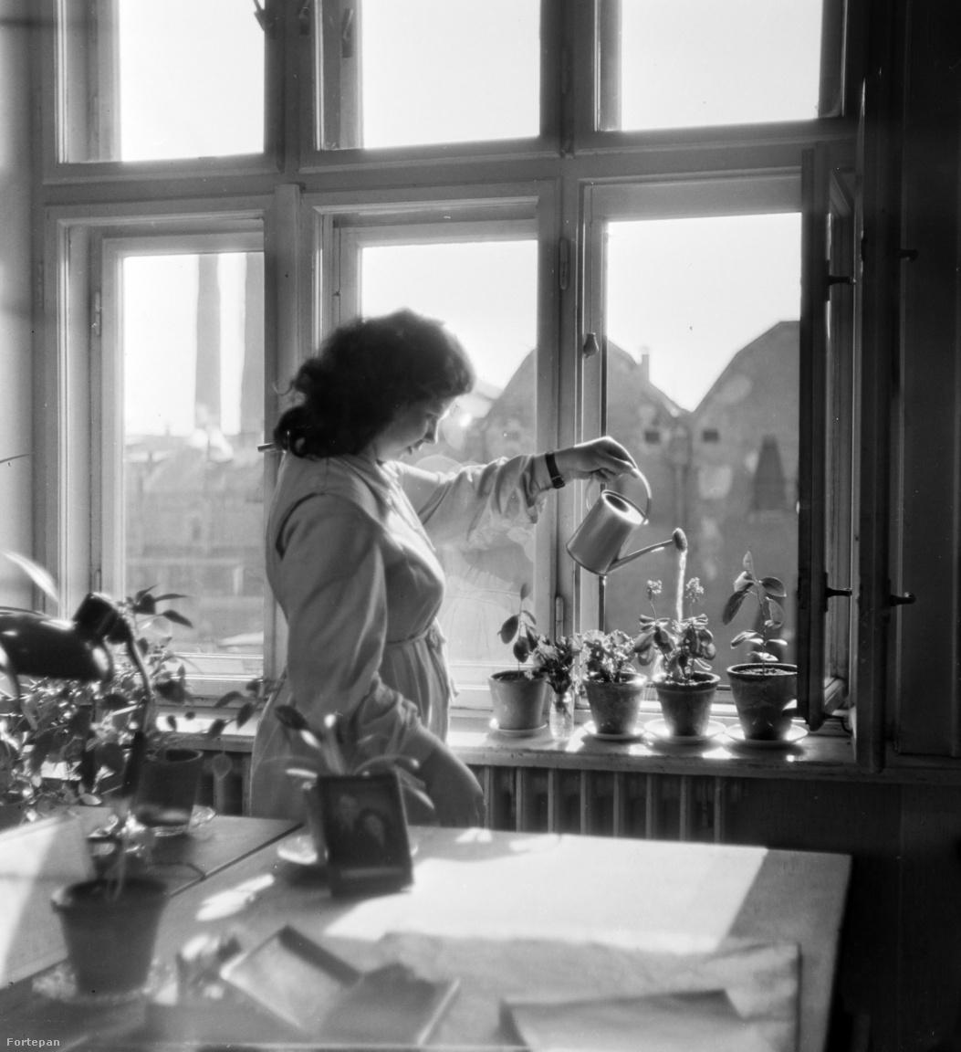 """Keveházi János valószínűleg profi fényképész vagy pedagógus lett volna, ha lett volna lehetősége továbbtanulni, de nem volt, így maradt neki a gyár, ahol képzettség nélkül is megtalálta a sorsa. 17 évesen, egy saját maga által bütykölt géppel kezdett fényképezni. """"1928-ban, a Mester utcai felsőkereskedelmi iskola tanulójaként bukásra álltam fizikából. Tudtam, hogy Bogdánfi tanár úr, a fizikatanár rajong a fényképezésért, ezért – hogy levegyem a lábáról – összeeszkábáltam egy fényképezőgépet. Kétpengős objektívvel, egyperces exponálási idővel működött. Kettest kaptam fizikából. (Akkor az jó jegy volt.) De ami a fényképezést illeti – többé nem volt megállás"""" – emlékezett vissza pár évtizeddel később."""