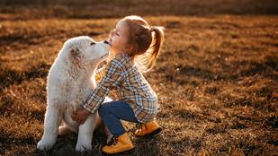 Ezért szeretik annyira a gyerekek az állatokat: sokuknak fontosabbak, mint az emberek