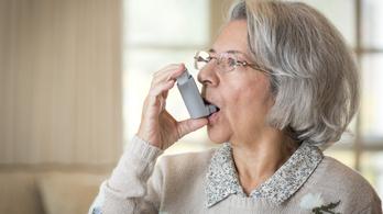 Asztmagyógyszerrel a koronavírus ellen?