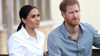Harry herceg egyedül tér vissza a palotába
