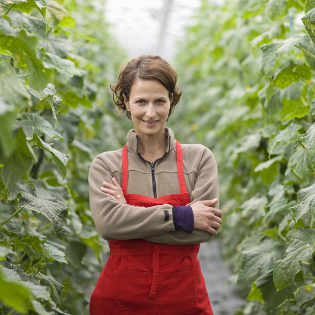 Balkonon ne kukoricát akarj termeszteni: ökölszabályok, amiket át kell gondolnod, ha veteményest tervezel
