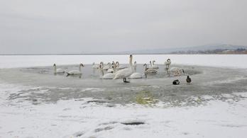 Borzasztó hideg jön pénteken, két megyére kiadták a másodfokú figyelmeztetést
