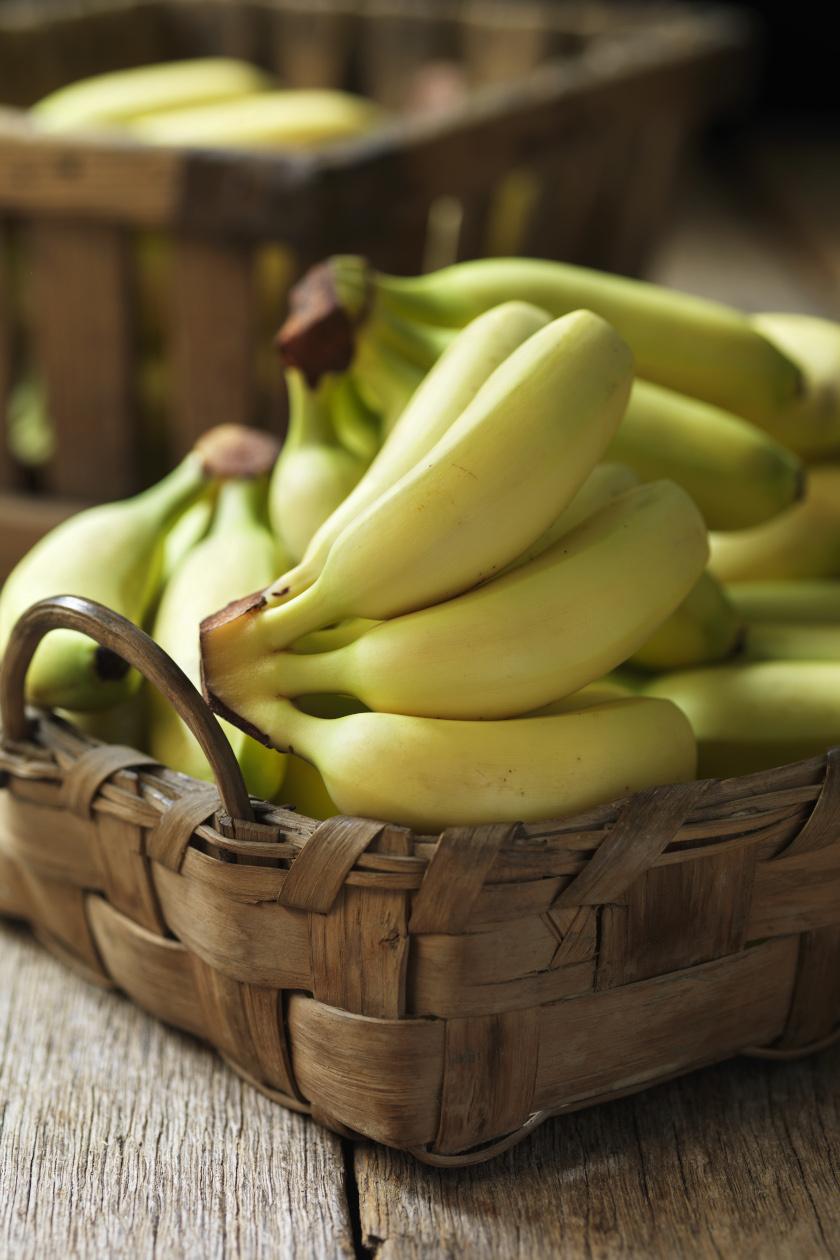banán álló ok