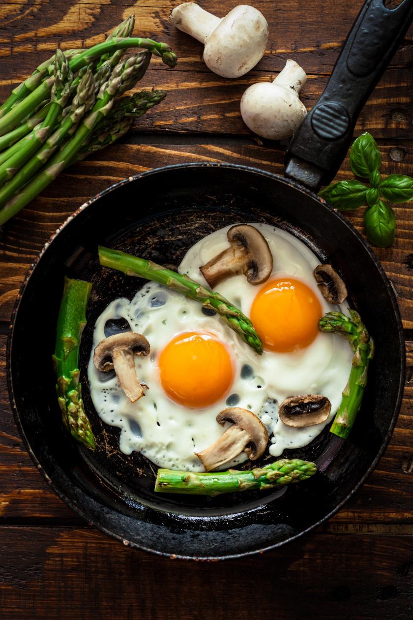 tojás álló ok