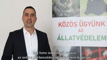 Százezren már kitöltötték állatvédelmi konzultációt