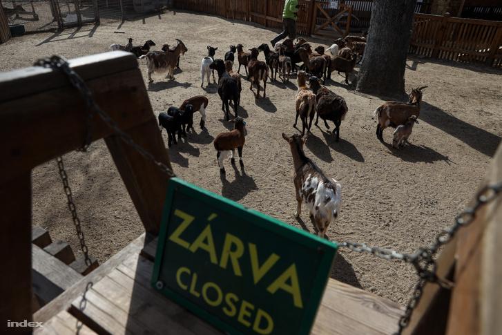 A bezárt állatkert 2020. március 24-én