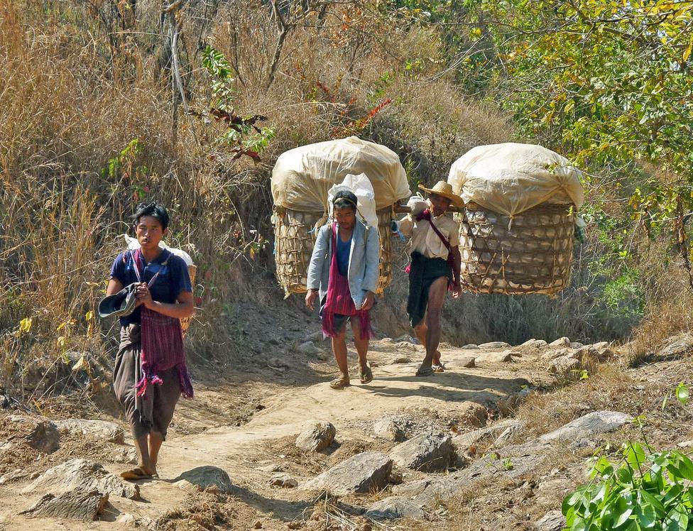 Hazafelé a teherrel. A hegyvidékien sokan választják a szállításnak ezt az ősi módját mindaddig, amíg az idő olcsóbb, mint az üzemanyag. Ezek a férfiak az Inle-tótól térnek haza a falujukba. A meredeken emelkedő ösvényt több ponton pihenőhelyek szakítják meg, esőtetővel, és kannákban, tartályokban tárolt ivóvízzel, amelynek fogyasztását egy közös bögre könnyíti meg.