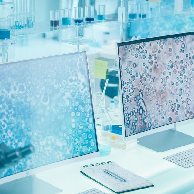 Egyedülálló orvosi módszert fedeztek fel magyar kutatók: az Alzheimer-kór kezelésében is segíthet
