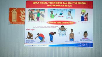 Nagy az ebolajárvány veszélye Nyugat-Afrikában