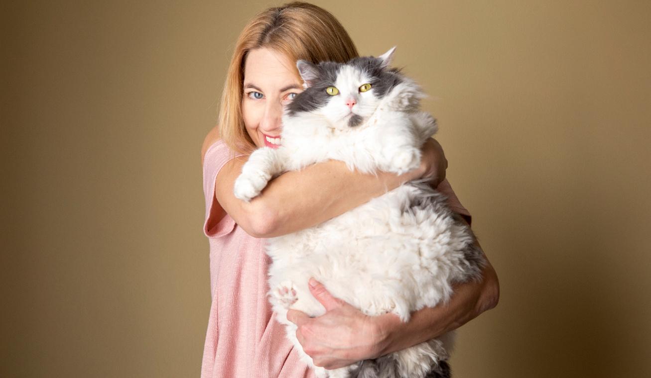 kövér macska nyitó